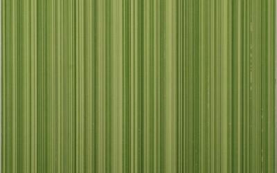 сорел зелен