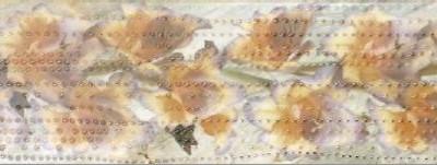 фриз ито ирис охра 1916