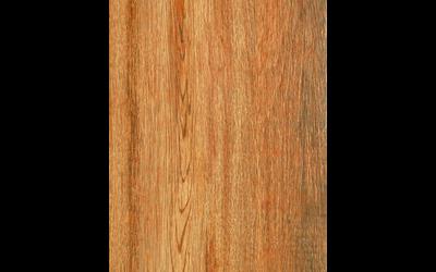 30x60 Ontario golden oak face 1_8236